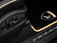 TopCar Porsche Cayenne II Vantage Carbon Edition, 24 of 25