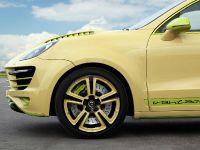 TopCar Vantage 2 Lemon Porsche Caynne II, 11 of 23
