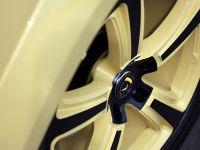 TopCar Vantage 2 Lemon Porsche Caynne II, 15 of 23