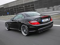 Vath Mercedes R172 SLK 350, 2 of 7