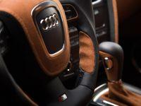 Vilner Audi S5, 10 of 20