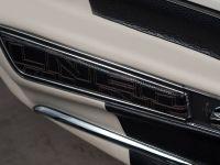 Vilner Chevrolet Corvette Stingray C3, 22 of 23