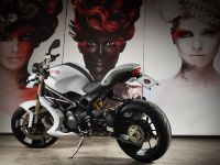 Vilner Ducati Monster 1100 Evo, 2 of 19