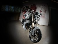 Vilner Ducati Monster 1100 Evo, 8 of 19