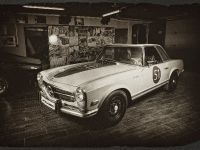 Vilner Gentle Pagoda Mercedes-Benz W113, 2 of 20