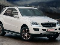 Vilner Mercedes-Benz ML 350, 14 of 14