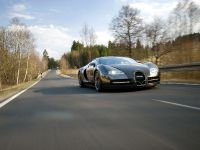 Linea Vincero Bugatti Veyron 16.4, 11 of 52