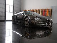 Linea Vincero Bugatti Veyron 16.4, 40 of 52