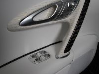 Linea Vincero Bugatti Veyron 16.4, 48 of 52