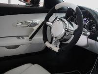Linea Vincero Bugatti Veyron 16.4, 50 of 52
