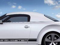 Volkswagen E-Bugster Concept, 10 of 14