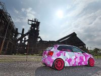 Volkswagen Polo GTI 6R Synergetic Effects, 5 of 15