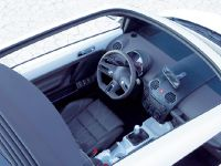 Volkswagen Beetle Ragster, 3 of 3