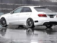 Wald 2014 Mercedes-Benz E-Class Black Bison Edition, 5 of 13