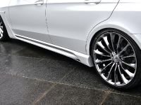 Wald 2014 Mercedes-Benz E-Class Black Bison Edition, 13 of 13