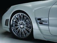 Wald Mercedes-Benz R230 Black Bison Edition, 10 of 17