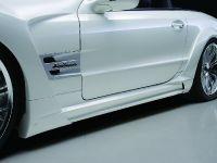 Wald Mercedes-Benz R230 Black Bison Edition, 11 of 17