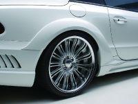 Wald Mercedes-Benz R230 Black Bison Edition, 12 of 17