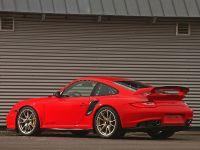 Wimmer RS Porsche GT2 RS, 10 of 14