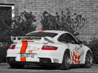 Wimmer RS Porsche GT2 Speed Biturbo, 6 of 6