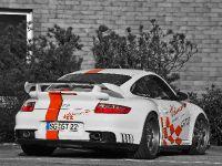 Wimmer RS Porsche GT2 Speed Biturbo, 6 of 6
