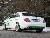 Wrap Works Mercedes-Benz CL 500, 8 of 15